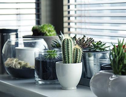 6 trucos para refrescar tu hogar en verano